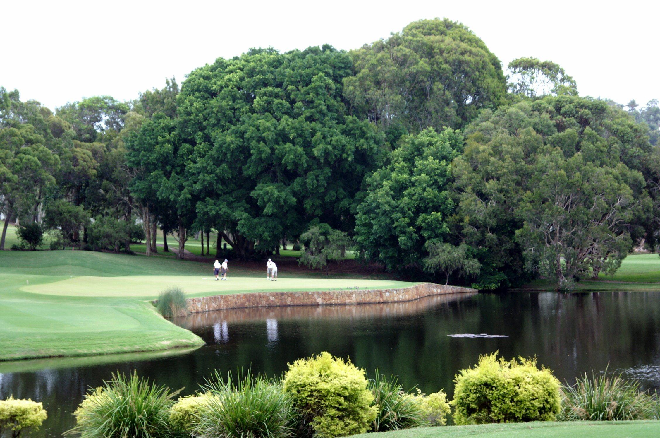 Hole 11, par 3, at Hyatt Regency Coolum golf course