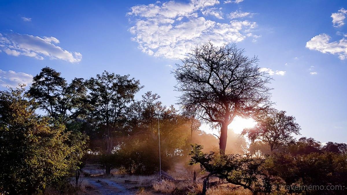 Sonnenaufgang hinter einem Baum nahe des Kings Pool Camps