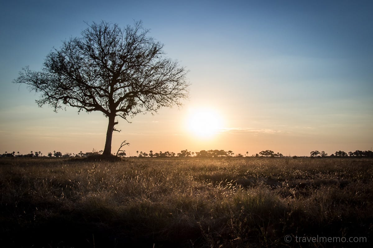 Sonnenuntergang im Moremi Game Reserve
