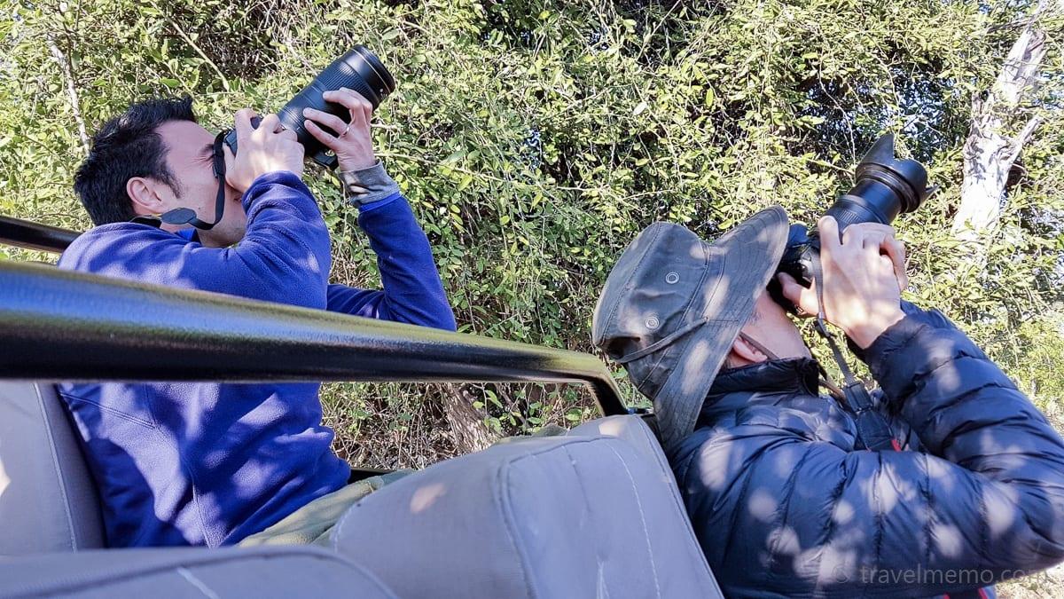 Safari-Paparazzis Walter und Daniel