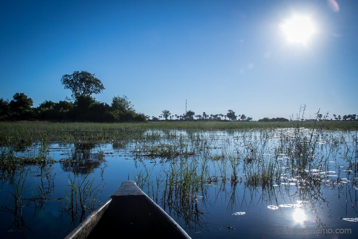 Katja and Walter in the Mocoro in Okavango Delta