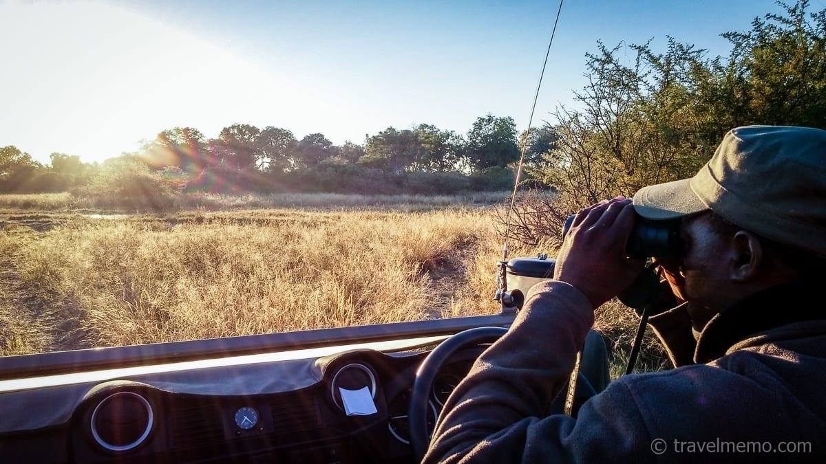 Guide Kambango hält Ausschau