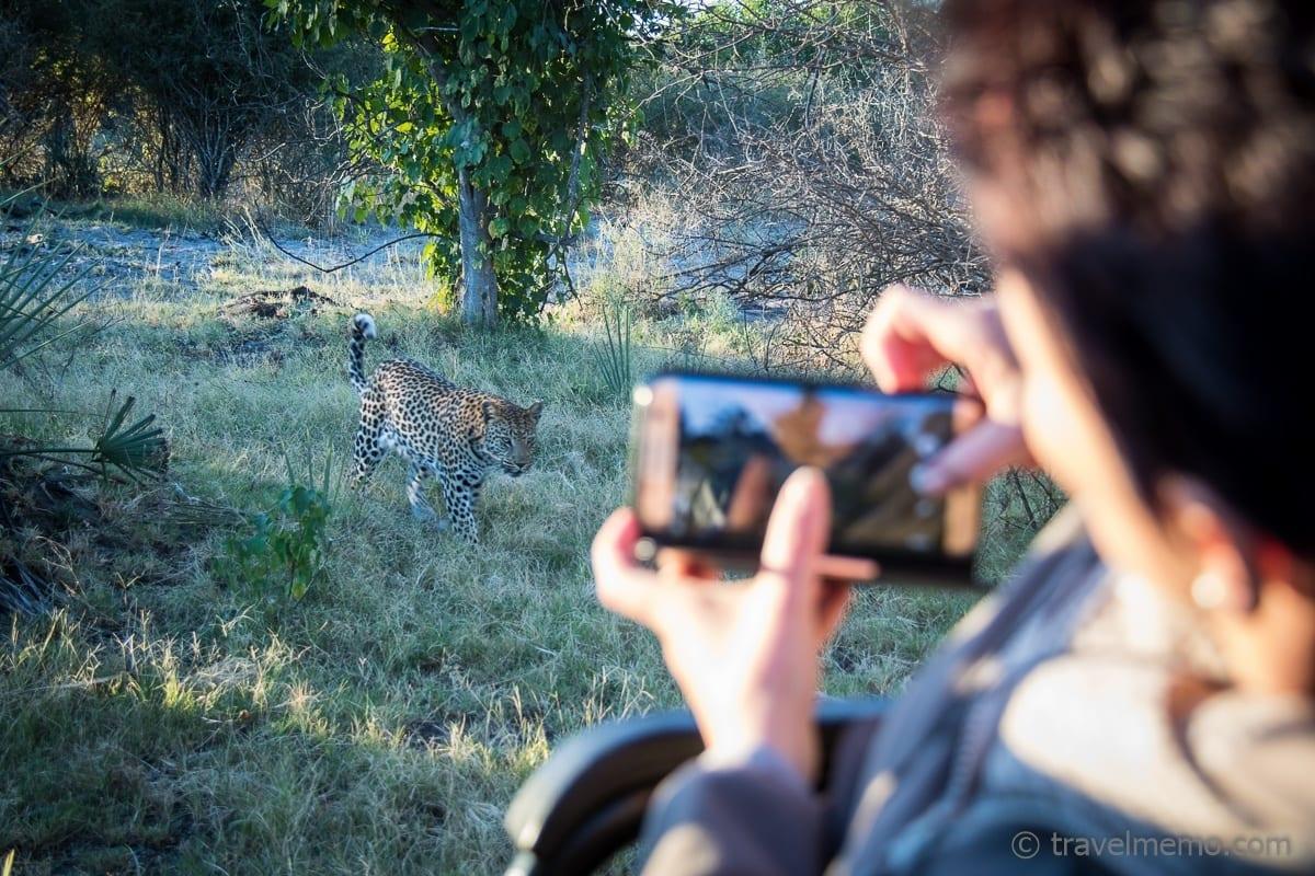 Katja fotografiert einen Leoparden mit ihrem Smartphone