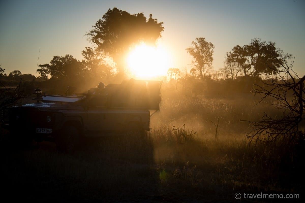 Auf Safari früh morgens