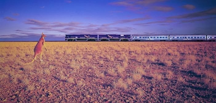 Indian Pacific -- a touch of train magic from Sydney to Perth